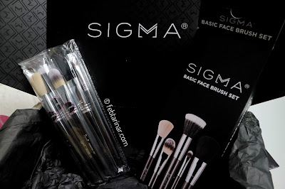 sigma face brush set febtarinar.com beauty blogger