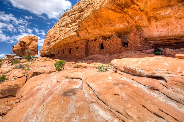 Breaking news:Today  President Obama announced the Bears Ears and Gold Butte National Monuments.