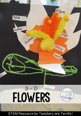 STEM Cahllenge: we created our own flower models. These had to have all the parts represented by the materials I made available and then labeled.