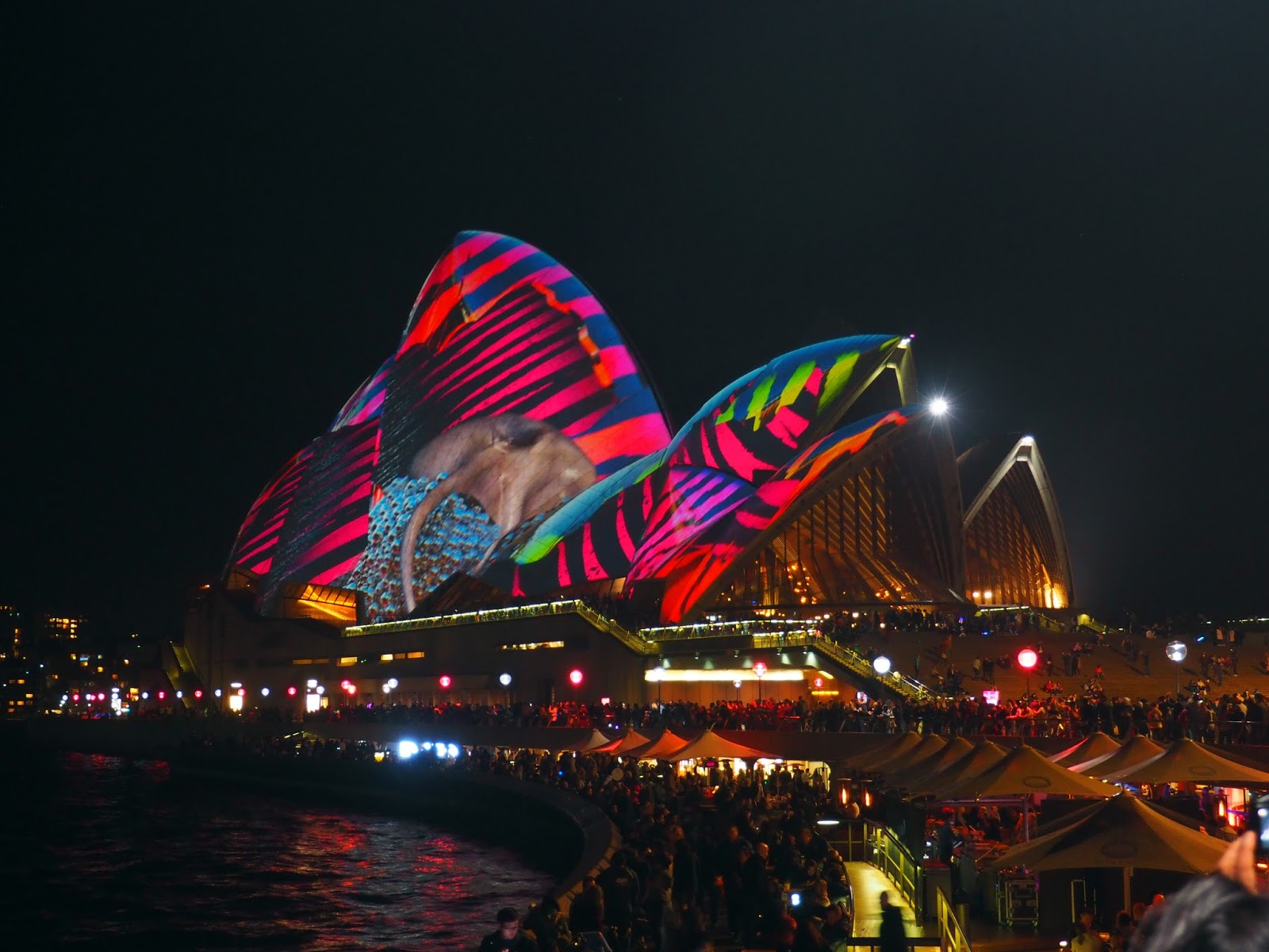 Vivid Sydney Opera House Sails