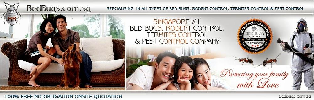 Beautiful Bed Bugs Singapore