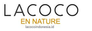 Lacoco Intensive Treatment Eye Serum