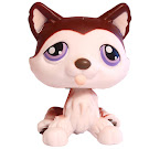 Littlest Pet Shop Special Husky (#427) Pet