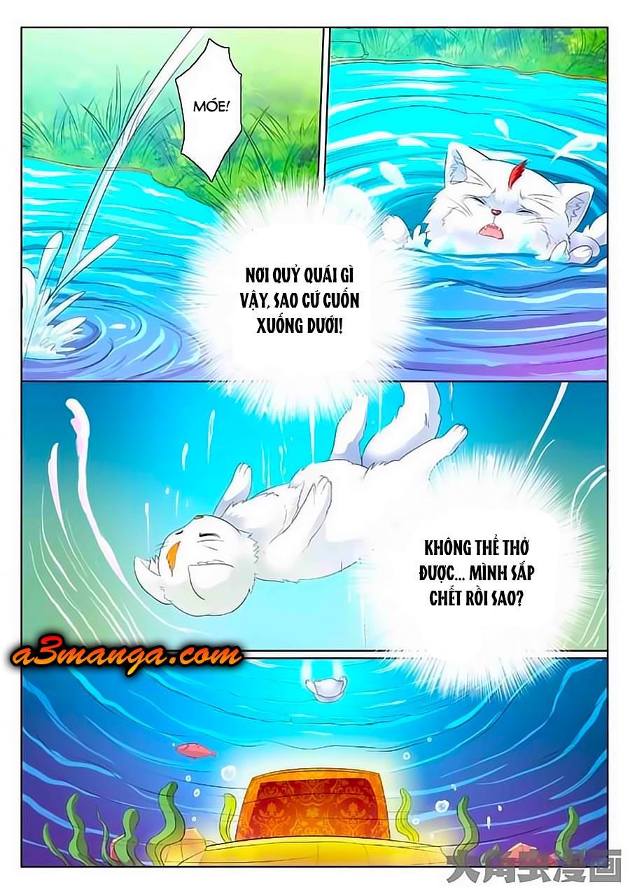Mau Lấy Con Mèo Đó Ra Chap 1 - Next Chap 2