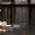 Animais Fantásticos: Nova cena mostra o interrogatório de Newt Scamander