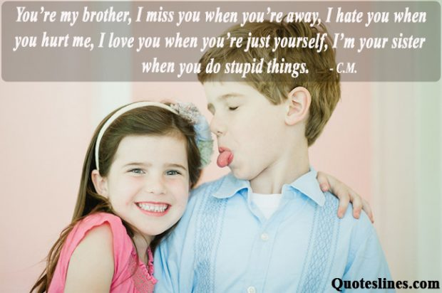 Funny Brother Quotes Wwwpicswecom