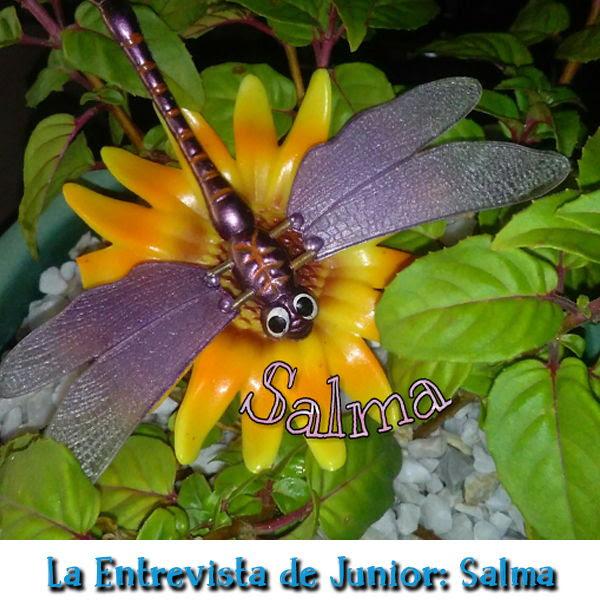 La Entrevista de Junior - Salma del blog De todo un poquito mia