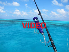Maldive Video 2