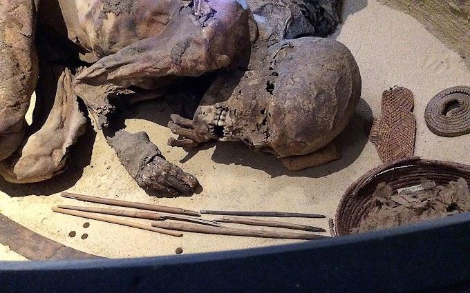 Ancient Mummy Older Than Pharaohs