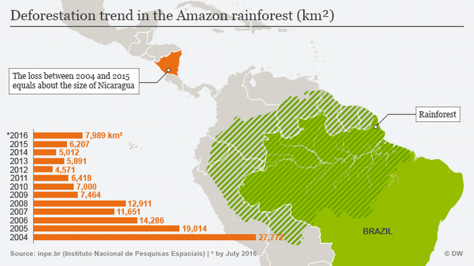 Deforestation trend in the Amazon rainforest