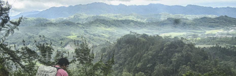 Bukit Njelir