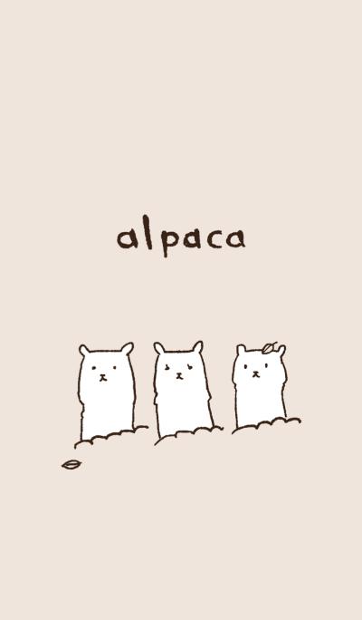 mochimochi alpaca