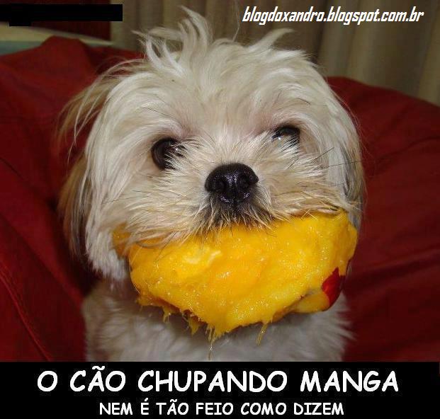 caomanga.jpg (621×592)