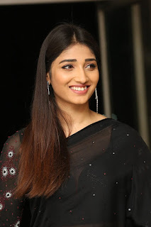 Priya Vadlamani at Husharu Movie 50 Days Celebrations