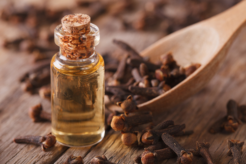 Remove mould with clove oil