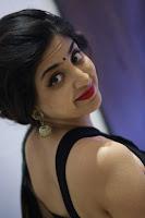 Poonam Kaur Gorgeous Photos in black saree TollywoodBlog
