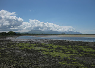 Low tide at Foryd Bay Nature Reserve near Caernarfon, Wales.