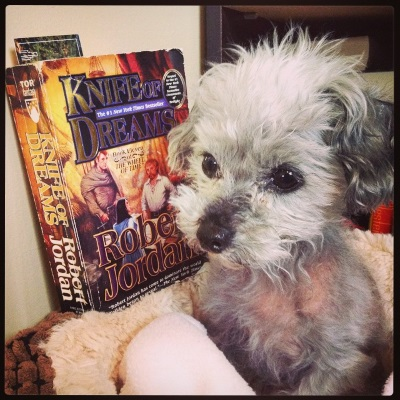 A short-haired grey poodle, Murchie, sits in a small dog bed, ears perked. Slightly behind him, propped atop one edge of the bed, is a paperback copy of Knife of Dreams. Its cover depicts a bunch of white people of various genders standing around a table.