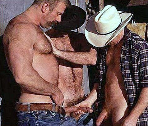 gay erection cam sex belgique
