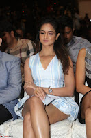 Shanvi Looks super cute in Small Mini Dress at IIFA Utsavam Awards press meet 27th March 2017 91.JPG