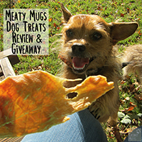 Meaty Mugs dog treat review
