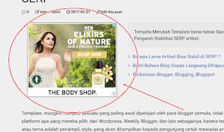contoh iklan media gambar