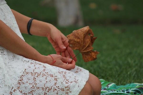 The-Autumn-Leaves-Fall-arcwrites