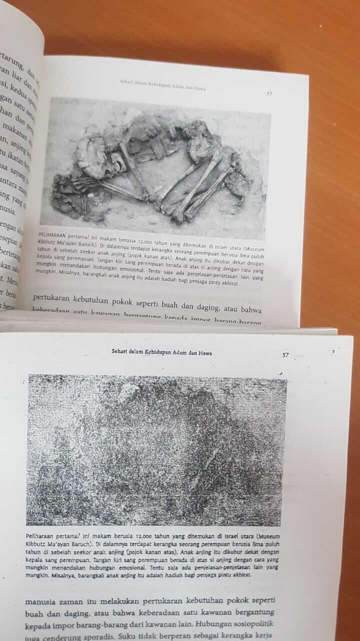 kualitas gambar yang sangat jauh antara buku original dan buku bajakan