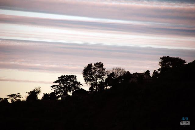tree-silhouette-sunrise-mokokchung-nagaland