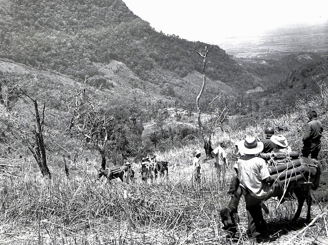 Filipinos carry ammunition to the artillery guns in Lipa, 1945.  Image source:  United States National Archives.