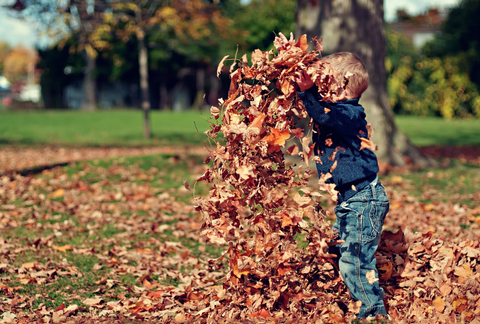 tips for getting your garden ready for winter my three and me