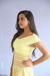 Shipra gaur in V Neck short Yellow Dress ~  065.JPG