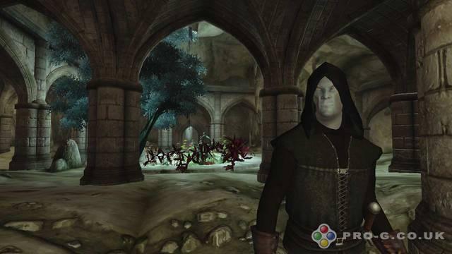 The Elder Scrolls IV Oblivion Full Version Download Screenshot 2