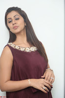 Nikki Galrani in a Brown Shining Sleeveless Gown at Nakshatram music launch ~  Exclusive 050.JPG