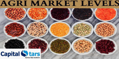 Agri commodity calls, Agri Commodity Tips, Chana Tips, Free  Commodity Tips, Free Agri Tips, Jeera Tips, MCX Tips Services, Turmeric Tips,