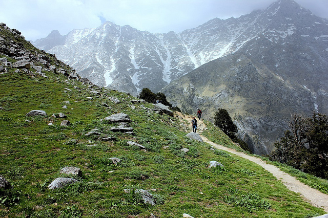 Triund Trek, McLeodganj