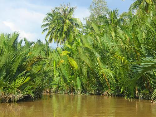 Discover Vietnam Tien Giang Province Vietnam Visa