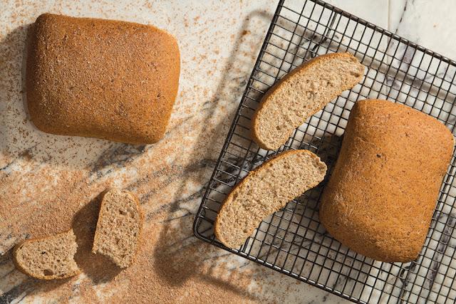 Brutaria cora: painica cu tarate