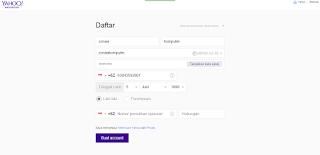 Tampilan halaman kolom pengisian biodata untuk email