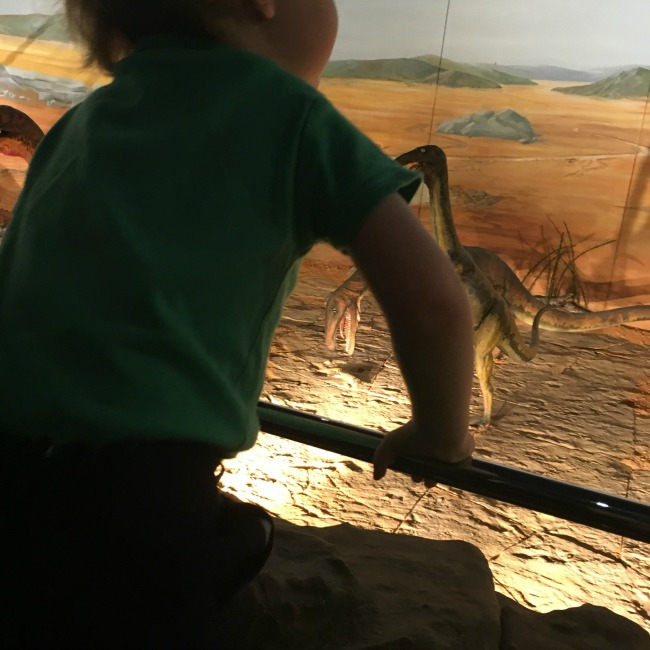 Dinosaurs-Worms-and-Sunshine-national-museum-cardiff-dinosaurs