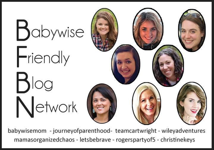 babywise friendly blog network bloggers