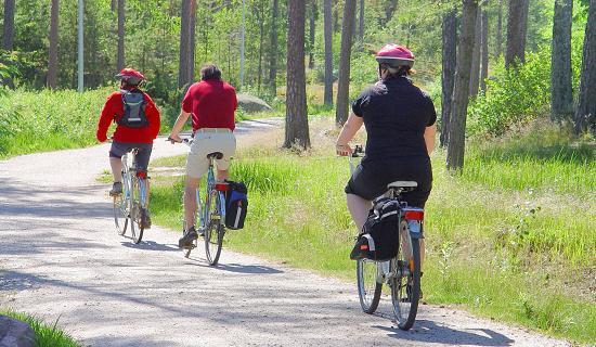 Niña Feliz Andar En Bicicleta: Ciclomobilidade: Andar De Bicicleta Ajuda A Manter O