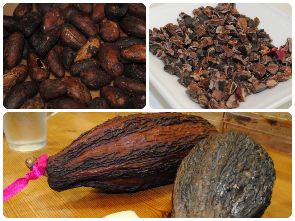 Cocoa pod, cocoa beans and cocoa nibs - ChocoHolly Hove