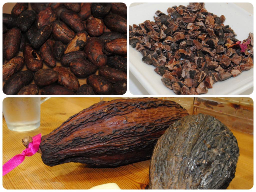 Cocoa pod, cocoa beans and cocoa nibs - ChocoHolly Hove