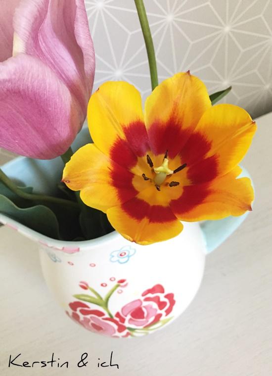Blumen Tulpen Deko Wohnen