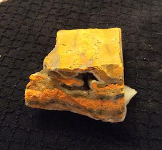 Tucson gem & mineral show rough bumblee jasper