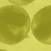 Proefdieronderzoek VU: speel niet op kunstgras met rubbergranulaat