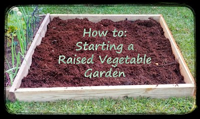 greneaux gardens how to starting a raised vegetable garden. Black Bedroom Furniture Sets. Home Design Ideas