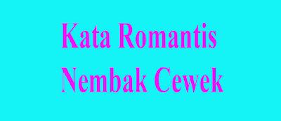 61 Gambar Kata Kata Romantis Buat Nembak Pacar HD