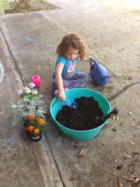 Spiritualmaya: Totally Awesome Cheap Kid Backyard